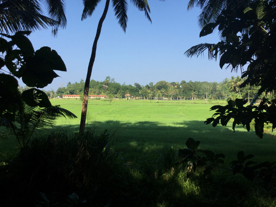 Tranquil Temple View Land Close To Beaches of Talpe